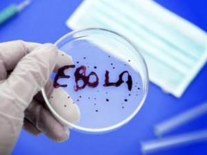 Женский взгляд на вирус эбола