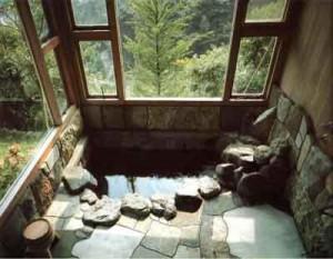 Водные процедуры на даче: как это делают японские женщины
