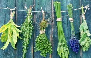 Травы, которые почти не имеют побочных эффектов