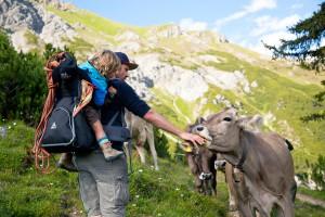 Отдых в горах летом: свобода движения