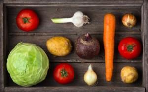 Разумное вегетарианское питание для любой стадии жизни?