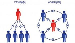 Андрагогика как наука обучения взрослых