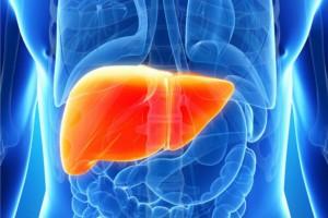 Что собой представляет гепатит С?